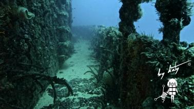 CSS51 Wreck