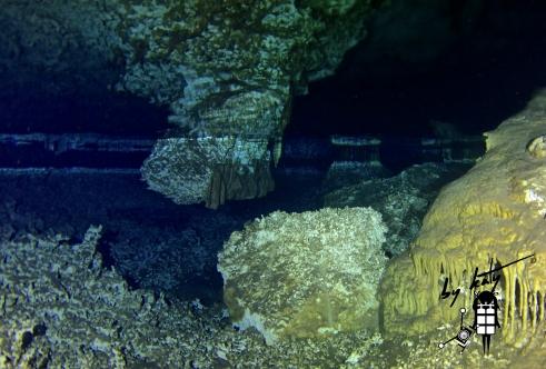 Halocline, Chikin ha Cave